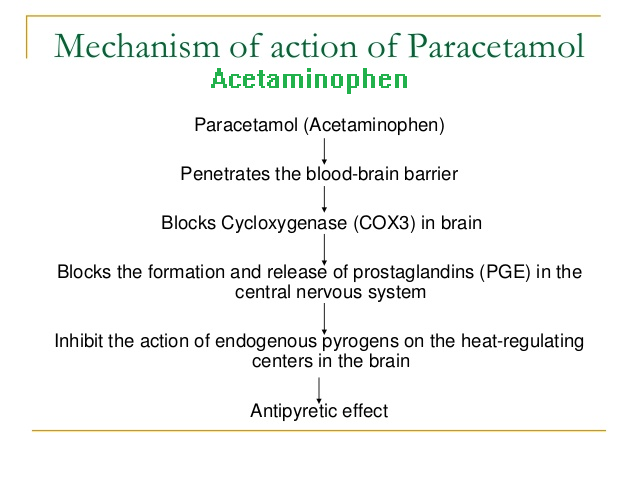 the mechanism of action of acetaminophen